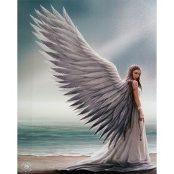 Canvas Art Print - Anne Stokes Spirit Guide