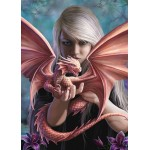 Anne Stokes Dragon Card 6 Packs - Girls & Dragons