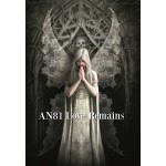 Anne Stokes Angel Card 6 Packs - Angels & Guides
