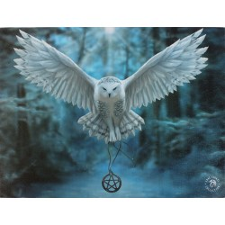 Canvas Art Print - Anne Stokes Awake Your Magic